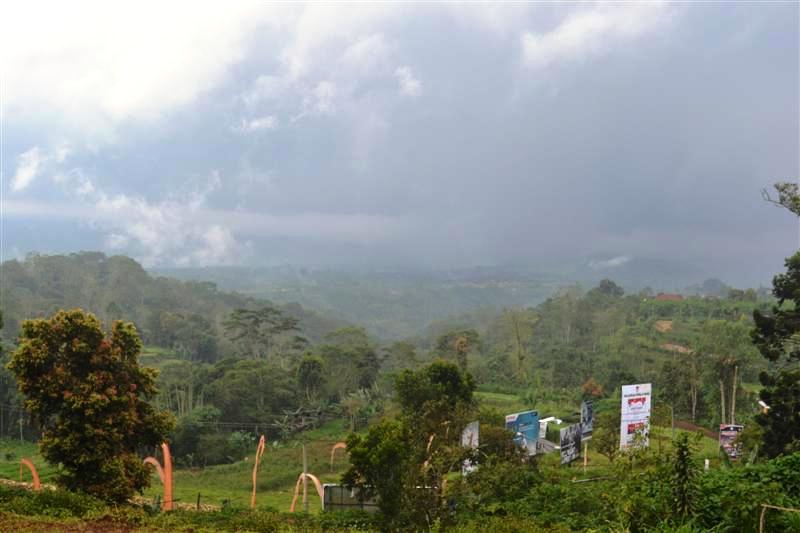 Property Tanah Dijual Di Bedugul Bali Cocok Untuk Villa Di Tabanan Tjbe038 Tanah Dijual Di Bedugul Tjbe038