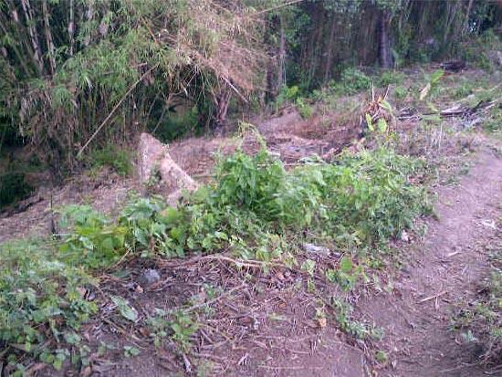 TJ1067 - Tanah dijual di Denpasar Bali