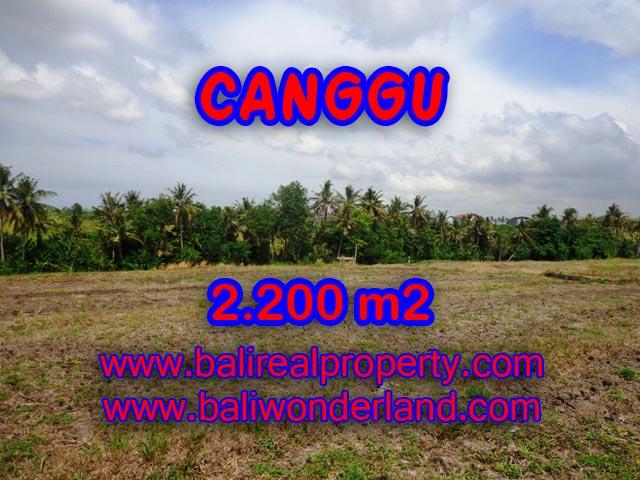 Tanah dijual di Canggu Bali - TJCG128