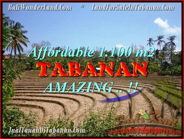 INVESTASI PROPERTI TANAH Di TABANAN DIJUAL Murah