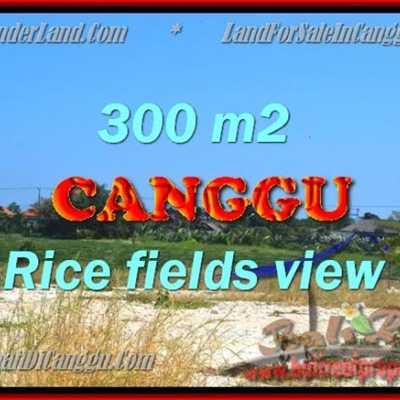TANAH DIJUAL DI CANGGU TJCG151