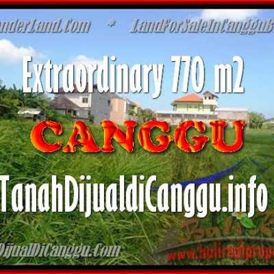 TANAH DIJUAL DI CANGGU BALI TJCG148
