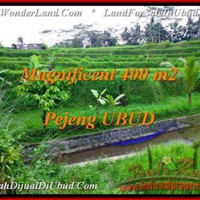 TANAH DI UBUD DIJUAL TJUB483