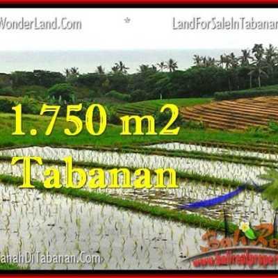 TJTB264 Tabanan Bali Property