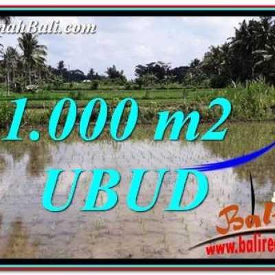 TJUB753 Tanah Murah di Ubud