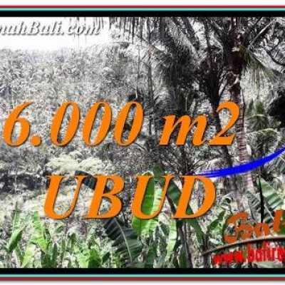 TJUB750 Tanah Dijual di Ubud