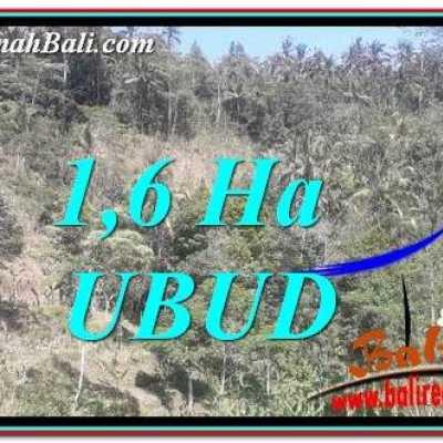 TJUB748 Tanah Dijual di Ubud