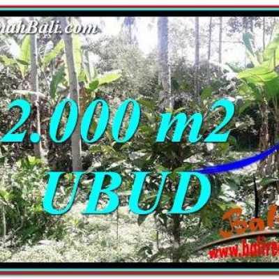 TJUB747 Tanah Dijual di Ubud