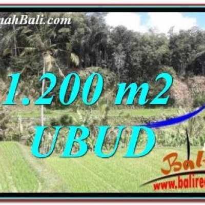 TJUB746 Tanah Dijual di Ubud