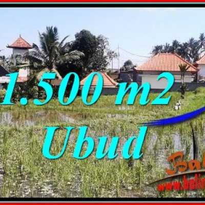 TJUB744 Tanah Dijual di Ubud