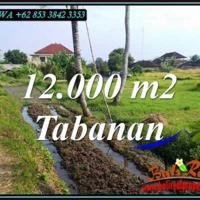 TJTB502 - Tanah Murah di Tabanan