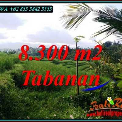 TJTB501 - Tanah Murah di Tabanan