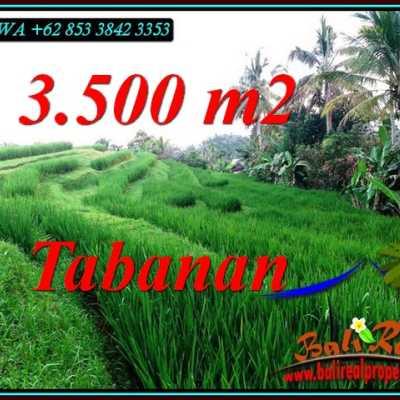 TJTB500 - Tanah Murah di Tabanan
