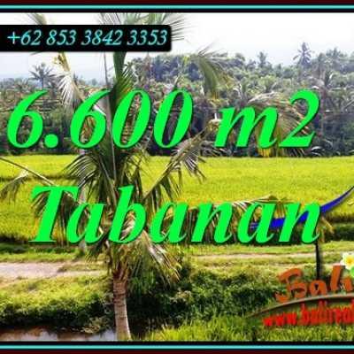 TJTB499C - Tanah Murah di Tabanan