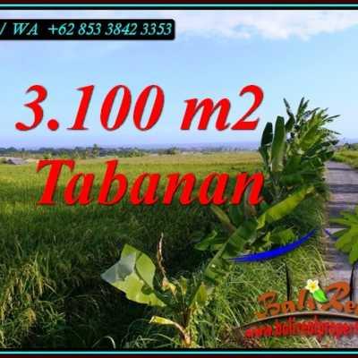 TJTB496 - Tanah Murah di Tabanan