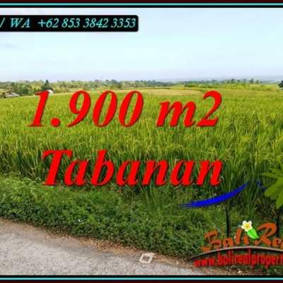 TJTB495 - Tanah Murah di Tabanan