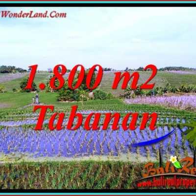 TJTB491 - Tanah Murah di Tabanan